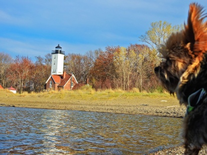 rocky and lighthouse