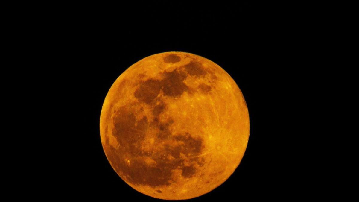 May's Moon – a 'Hare' raisingTale.