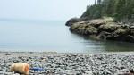 rocky beach2